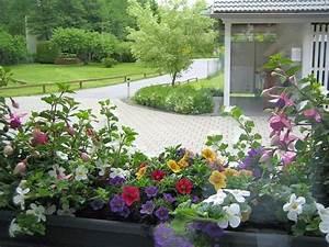 Herbstliche Blumenkästen Bilder : balkon pflanzen blumentopf praktisch blumenkasten ~ Lizthompson.info Haus und Dekorationen