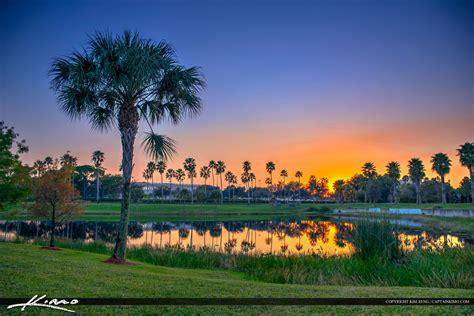 palm gardens sunset at lake mall