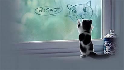 Funny Meme Cat Sad Grumpy Kitten Quote