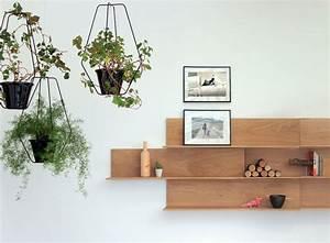 Suspension Plante Interieur : 14 id es pour d corer sa maison avec des plantes vertes ~ Preciouscoupons.com Idées de Décoration