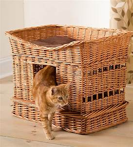 Rattan Cat House - So That's Cool