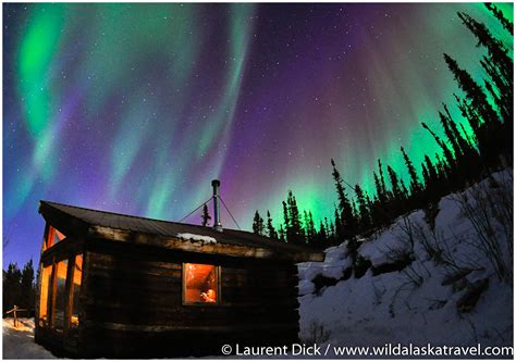 Wild Alaska Travel Alaska Northern Lights Tour Photos