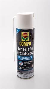 Spray Gegen Spinnen : compo ungeziefer spezial spray compo ungeziefer spezial spray g nstig online kaufen ~ Whattoseeinmadrid.com Haus und Dekorationen