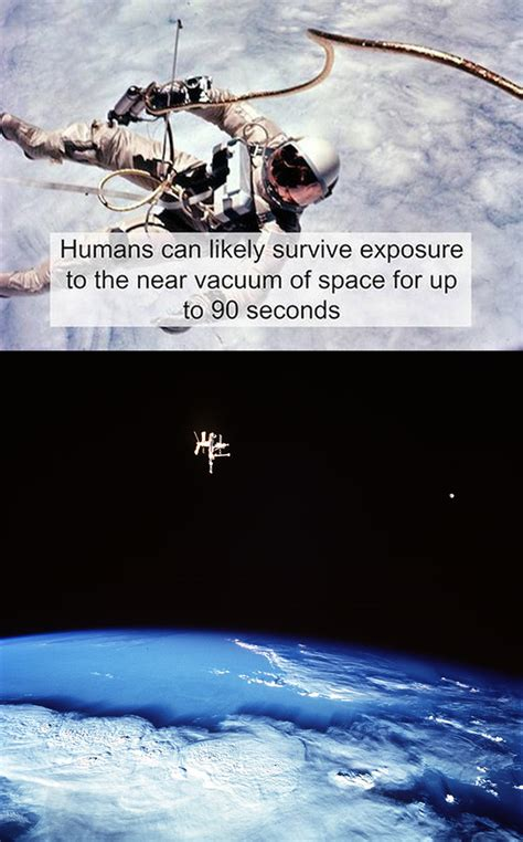 What Is In The Vacuum Of Space by Humans Can Survive The Vacuum Of Space For 90 Seconds And