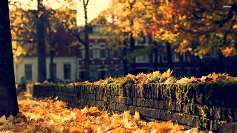 Autumn Wallpapers Cozy by Cozy Wallpapers Wallpaper Cave