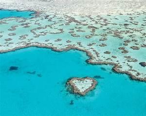Heart Reef Esca... Mooiste Foto