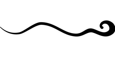 Kostenlose Vektorgrafik Polka, Schwarz, Design, Verzieren. Dark Armpit Signs Of Stroke. Steven Universe Signs. Bicultural Mama Signs. Outdoor Signs Of Stroke. Fairy Tail Signs. Cute Birthday Signs. Poop Signs. Hopital Signs