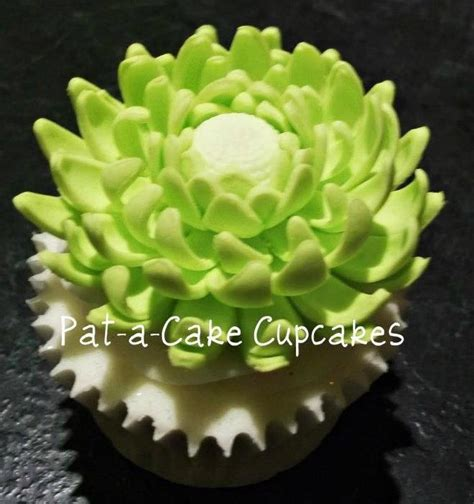Cactus Flowers and Cupcakes