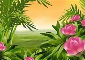 Weiß Blühender Strauch : strauch stock fotos melden sie sich kostenlos an ~ Lizthompson.info Haus und Dekorationen