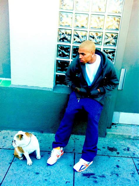 chris browns  blond hairdo entertainment rundown