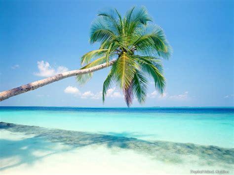 Riviera Maya ? Tulum Real Estate Properties