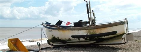 Southwold Boat Trips by Coastal Tours Seal Trips In Southwold