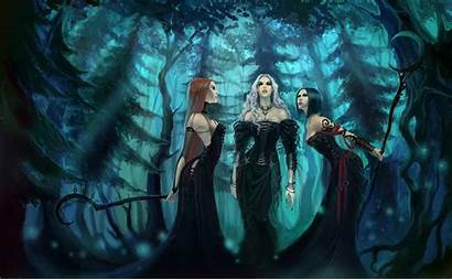 Gothic Witch Fantasy Witches Spooky Artwork Forest