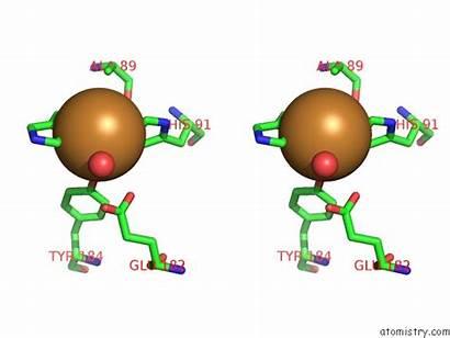 Copper Cu Pdb Stereo Aa15 Lytic Monooxygenase