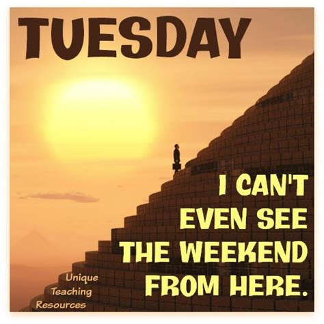 Tuesday Quotes 15 Sayings And Quotes About Tuesday