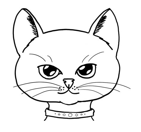 cat face  drawing clipart