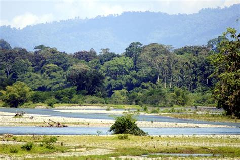CHANGUINOLA, Bocas del Toro - Portal del Turismo ...