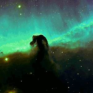 horsehead nebula on Tumblr