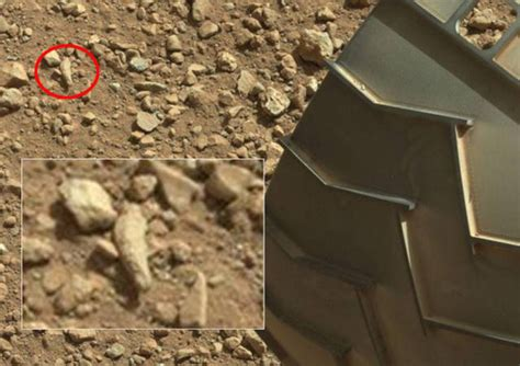 nasas mars rover camera captures  crab  alien