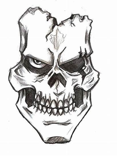 Skull Drawings Drawing Easy Skulls Animal Skeleton