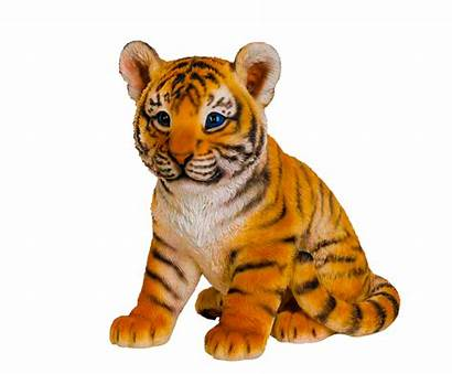 Transparent Animal Wild Clipart Animals Tiger Realistic