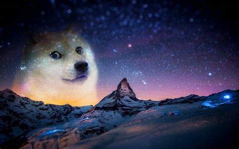 Doge Meme Wallpaper - snow night animals doge memes wallpapers hd desktop and mobile backgrounds