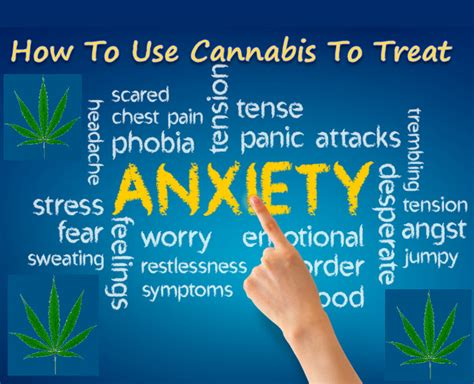 cannabis  treat anxiety