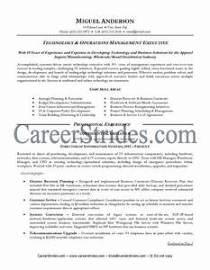 28  Information Technology Resume Examples