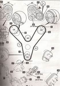 Need A Timing Belt Diagram With Timing Marks For Kia Carnival