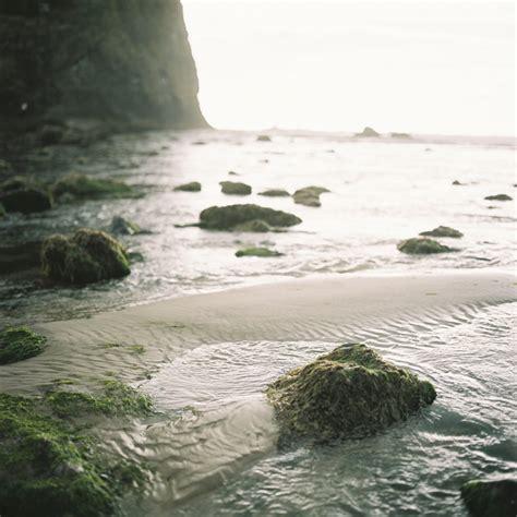 tidepools in cannon beach oregon entouriste
