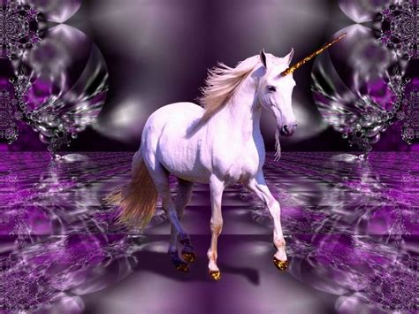 world unicorn stables