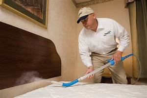 how to get rid of bed bugs for good hirerush blog With cleaning after bed bug treatment
