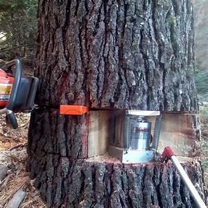 Salt Creek Hi-Jacker 45 Ton Tree Jack Tree Jacks