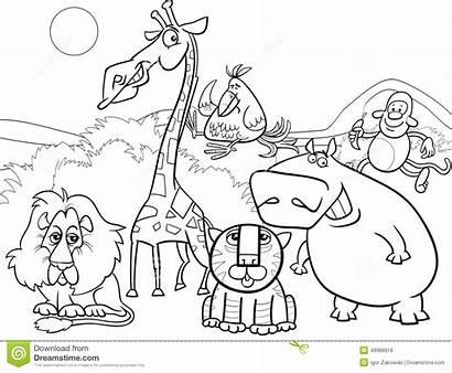 Coloring Animals Wild Pages Cartoon Safari African