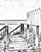 Coloring Adult Boardwalk Scene Digital Scenes Ocean Printable Fence Adults Landscape Pattern Sheets Printables Stained Glass Gray Sunrise Drawings Tropical sketch template