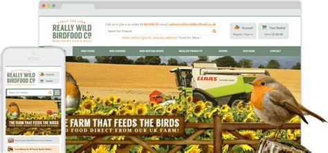 web design cardiff designer websites