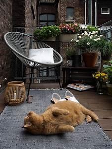 Balkongestaltung Kleiner Balkon : kleiner balkon katzen kreative ideen f r innendekoration ~ Michelbontemps.com Haus und Dekorationen