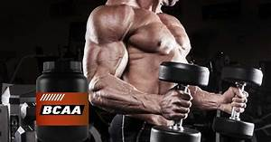 Bcaa Powder Side Effects  Uses And Benefits