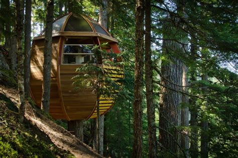 Hidden Egg Treehouse By Joel Allen : A Hidden Treehouse Deep In The Woods