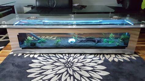 coffee table fish tank youtube