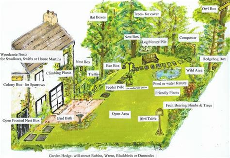 things to do with create a garden wildlife sanctuary