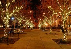 Christmas Lights In Columbia Maryland Holiday Decorating Service Christmas Light Installation