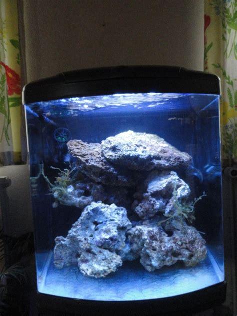 aquarium eau de mer fish only recifal mon premier r 233 cifal sera marin 130l coco27000 pr 233 sentation de vos bacs