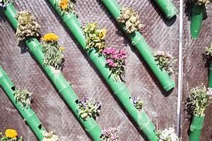 Vertikaler garten selber bauen schritt fur schritt anleitung for Französischer balkon mit vertikaler garten selber bauen