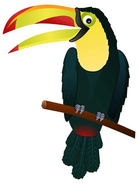 Best Toucan Clipart #19689 Clipartioncom