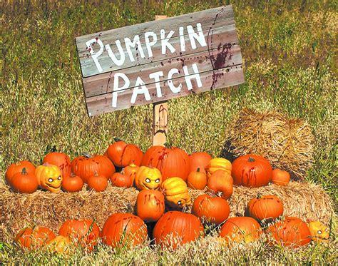Colorado Pumpkin Patches 2017 by Orlando Pumpkin Patches 2017 Mycentralfloridafamily Com
