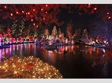Christmas Lights On The Lake Pictures, Photos, and Images