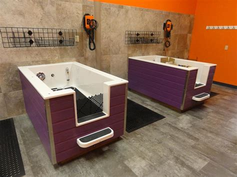 dog wash sinks   improved high quality plastic