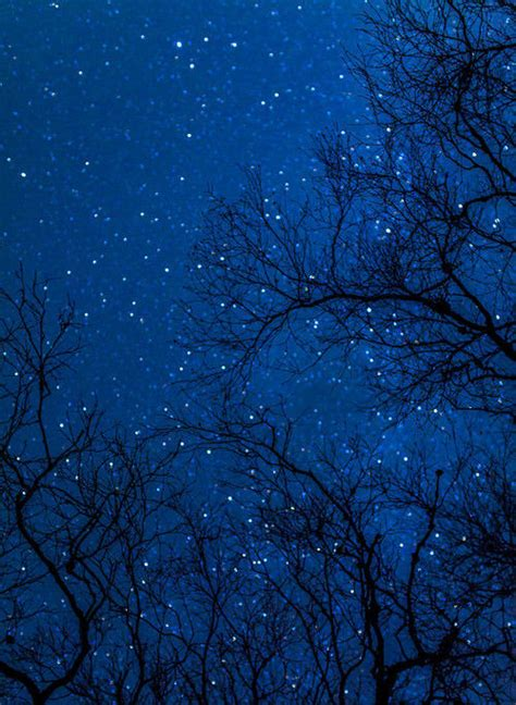 Starry Night Sky Quotes Quotesgram