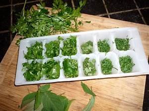 Ventilateur Avec Bac A Glacon : comment conserver vos herbes aromatiques pendant l 39 hiver ~ Dailycaller-alerts.com Idées de Décoration